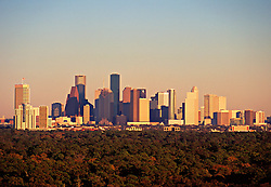 Houston, Texas skyline with trees in foreground.<br />