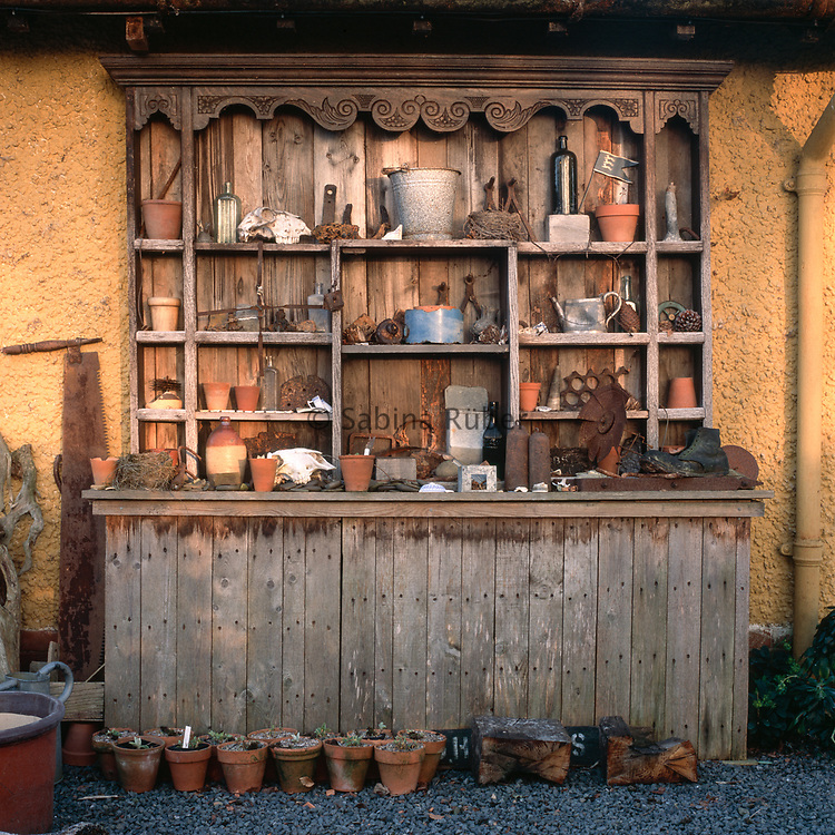 Primula auricula theater with salvaged objects and terracotta pots in winter, Bryan's Ground, Herefordshire