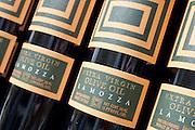 Olive oil bottles on a store shelf, New York City.
