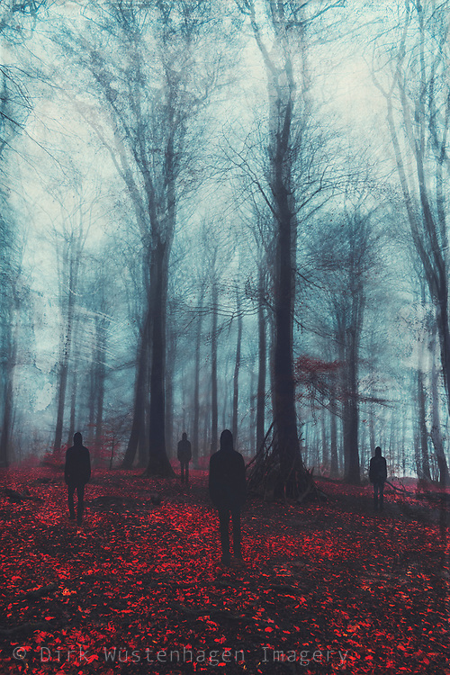 Four people standing in a forest on a misty day - manipulated surreal photograph
