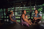 1991: Kenyah indigenous people, sitting on the verandah of a traditional wooden Dayak longhouse. Long Geng, Belaga district, Sarawak, Borneo<br /> <br /> Tropical rainforest and one of the world's richest, oldest eco-systems, flora and fauna, under threat from development, logging and deforestation. Home to indigenous Dayak native tribal peoples, farming by slash and burn cultivation, fishing and hunting wild boar. Home to the Penan, traditional nomadic hunter-gatherers, of whom only one thousand survive, eating roots, and hunting wild animals with blowpipes. Animists, Christians, they still practice traditional medicine from herbs and plants. Native people have mounted protests and blockades against logging concessions, many have been arrested and imprisoned.