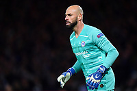 Football - 2019 / 2020 UEFA Champions League - Round of Sixteen, First Leg: Chelsea vs. Bayern Munich<br /> <br /> Chelsea's Willy Caballero, at Stamford Bridge.<br /> <br /> COLORSPORT/ASHLEY WESTERN