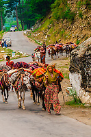 Nomadic people on horseback near the mountain town of Pahalgam, Kashmir, Jammu and Kashmir State, India.