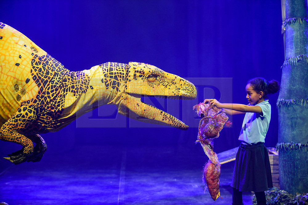 © Licensed to London News Pictures. 13/02/2020. LONDON, UK. A pupil from Stockwell Primary School feeds a Fukui raptor from Erth's Dinosaur Zoo, one of the acts forming part of Imagine Children's Festival at Southbank Centre for half term 12 to 23 February 2020. (Permission to photograph obtained from schools teacher).  Photo credit: Stephen Chung/LNP