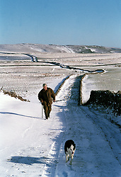 Farmer & sheepdog walking up lane in winter Yorkshire UK