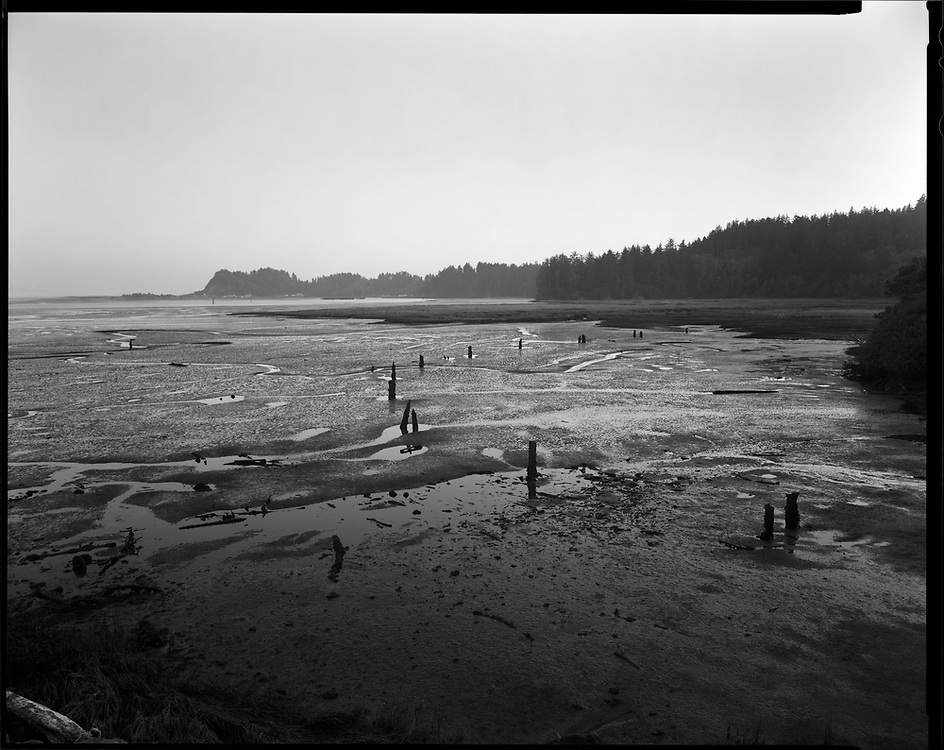 Low Tide, Ilwaco, Washington. Ancestral Land of the Lower Chinook People.
