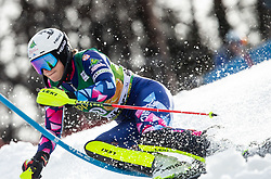 IGNJATOVIC Nevena of Serbia competes during the 7th Ladies'  tSlalom at 55th Golden Fox - Maribor of Audi FIS Ski World Cup 2018/19, on February 2, 2019 in Pohorje, Maribor, Slovenia. Photo by Matic Ritonja / Sportida