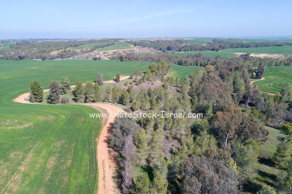 Aerial view of farmland and nature in central Israel along the Yarkon stream. Photographed in winter in February