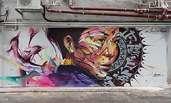 November 10, 2016 - Hong Kong, Hong Kong S.A.R, China - Wall painting by Parisian street artist Alexandre Monteiro aka Hopare of Hong Kong actress and canto pop star Niki Chow .''Walls of Change'' street art in Hong Kong painted ahead of the The √íHope for Wildlife√ì Gala Dinner to raise awareness for the plight of endangered animals the world over..Sai Yin Pun Hong Kong.10th November 2016. Photo by Jayne Russell. (Credit Image: © Jayne Russell via ZUMA Wire)