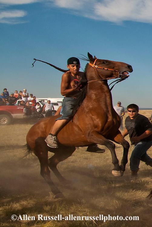 Fort Belknap Indian Reservation, Milk River Memorial Horse Races, Painted Horse Relay, Nolan Werk, winner, start