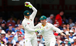 Austalia's Tim Paine and Shaun Marsh celebrate the wicket of Jonny Bairstow during day two of the Ashes Test match at The Gabba, Brisbane.