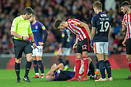 *** during the EFL Sky Bet League 1 match between Sunderland AFC and Luton Town at the Stadium Of Light, Sunderland, England on 12 January 2019.