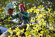 Daniel Marc Hooper, better known as Swampy, assists fellow anti-HS2 tree protectors from a makeshift tree house about sixty feet above ground at a wildlife protection camp in ancient woodland at Jones' Hill Wood on 5 October 2020 in Aylesbury Vale, United Kingdom. The Jones' Hill Wood camp, one of several protest camps set up by anti-HS2 activists along the route of the £106bn HS2 high-speed rail link in order to resist the controversial infrastructure project, is currently being evicted by National Eviction Team bailiffs working on behalf of HS2 Ltd.
