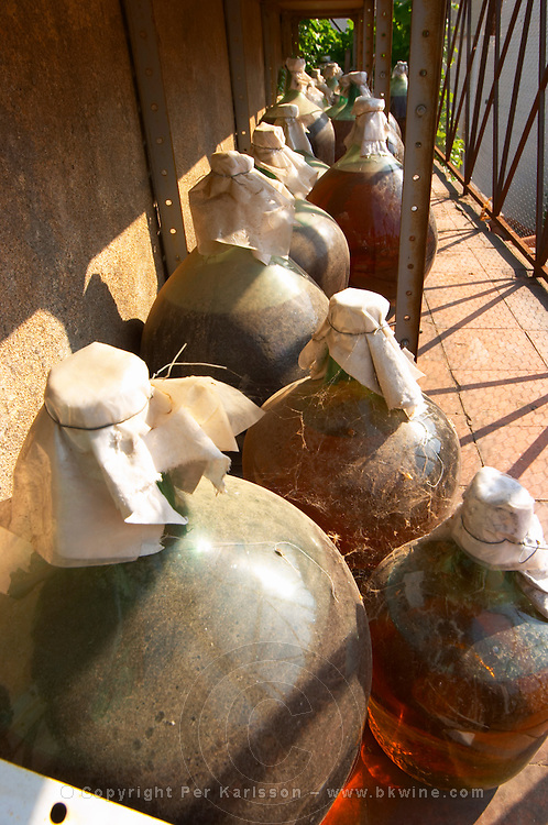 Banyuls wine aging in demijohn outside. Domaine Pietri-Geraud Roussillon. Demi-johns with Rivesaltes and Banyuls wine stored outside subject to sun and weather for oxidative aging. France. Europe. Bottle.