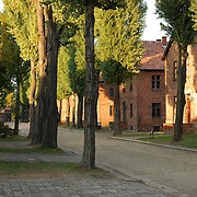 Alley to Appellplatz, Auschwitz
