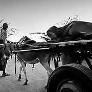 A Somalian refugee is seen bringing a patient on a donkey to a stabilization centre in IFO-1camp in the Dadaab refugee camp in northeastern Kenya. Photo: Sanjit Das/Panos