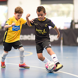 BRISBANE, AUSTRALIA - OCTOBER 27:  during the Brisbane Juniors Futsal Premier League Elitefoot matches on October 27, 2018 in Brisbane, Australia. (Photo by Patrick Kearney)