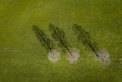 THEMENBILD - drei blühenden Bäume werfen einen Schatten auf eine Bergwiese aufgenommen am 02. Mai 2019 in Kaprun, Oesterreich // three blossoming trees cast a shadow on a mountain meadow in Kaprun, Austria on 2019/05/02. EXPA Pictures © 2019, PhotoCredit: EXPA/ JFK