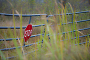 Stop sign and metal gate, October, middle Michigan, USA