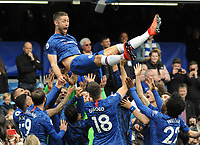 Football - 2018 / 2019 Premier League - Chelsea vs. Watford<br /> <br /> Gary Cahill of Chelsea is thrown into the air by his team mates after the match, at Stamford Bridge.<br /> <br /> COLORSPORT/ANDREW COWIE