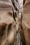 In fall 2020, Zebra Slot had eroded into the very narrow passage shown here, which my slender 5 ft 8-inch body could still squeeze through; but some hikers needed to use chimneying technique here to reach the most beautiful striped rocks just beyond. Zebra Slot Canyon, Grand Staircase-Escalante National Monument, Utah, USA. From Hole-in-the-Rock Road, hike east on a well-trodden but unmarked path, 5 miles round trip with 450 feet total gain to Zebra Slot.