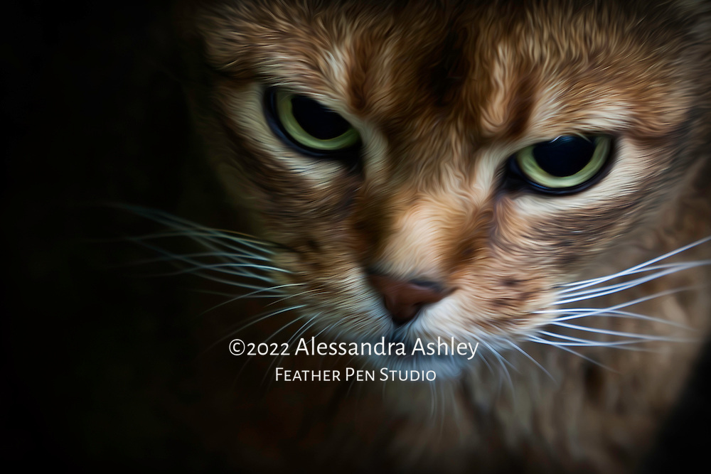 Expressive portrait of green-eyed, red short-haired cat wearing unhappy expression. Oil paint effect lightly blended with original photo.