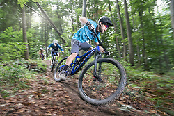 Mountainbikers speeding downhill through forest track, Bavaria, Germany