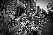 Londyn, 2009-03-06. Kwiaciarnia, Borough Market