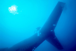 tail assembly of Boeing 727-100 wreck, sunk as an artificial reef in 1993, Miami, Florida, Atlantic Ocean