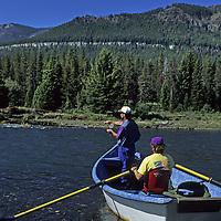 FLY FISHING, Drift boat fishing on Wyoming's Clark Fork River, near Yellowstone.  (MR)
