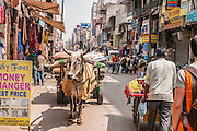 Busy bustling street in Delhi, India