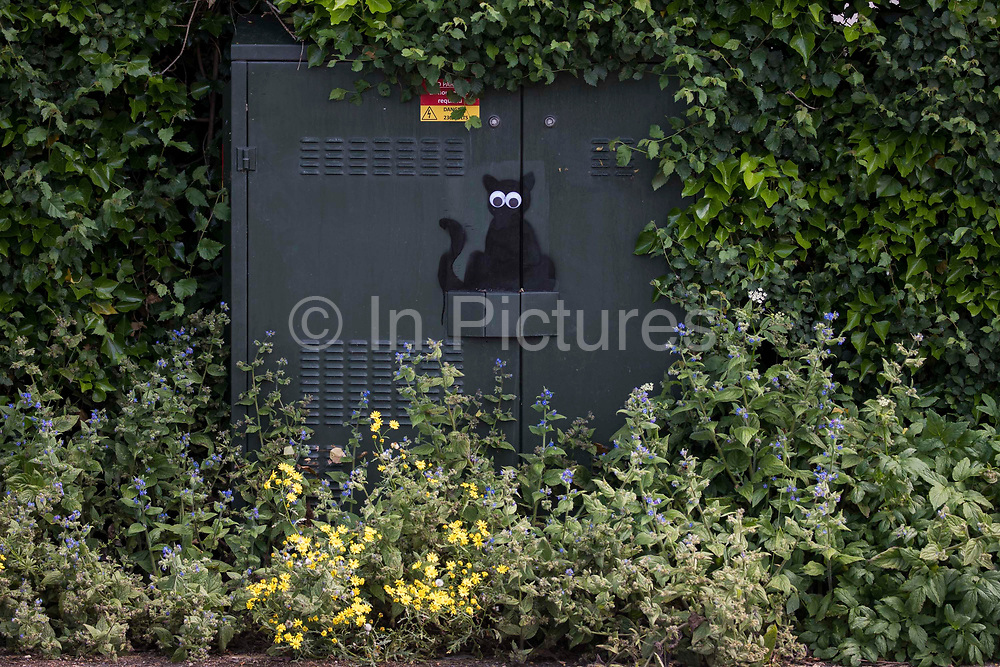 A black cat stencil with stick-on eyes by a street artist dubbed Catsy by appreciative local residents is pictured on 8th June 2021 in Wokingham, United Kingdom. There are believed to be around 30-40 such black cat stencils sprayed around Wokingham by the anonymous street artist.