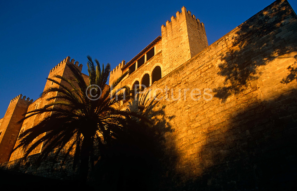 Set below palm trees, a low angle early morning view of the high walls of Palma's Museum del Palau de la Almudaina (Almudaina Palace). The Royal Palace of La Almudaina is the Alcázar (fortified palace) of Palma, the capital city of the Island of Majorca, Spain. Having been built as an Arabian Fort, it was claimed as official royal residence in the early 14th century. Inside it has many empty rooms, however, when King James II began restoration, his design plan included the encompassing of the small, romanesque Chapel of Saint Anne. It stands opposite the dramatic Palma Cathedral with commanding views over the Bay of Palma. It belongs to and is administered by the public Patrimonio Nacional which administers the assets of the State for the Crown.