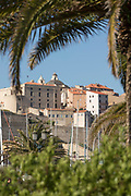 Citadel under blue sky from behind palm tree leaves, Calvi, Corsica, France
