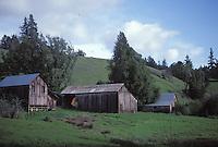 Barns in Anderson Valley, California