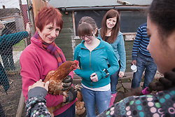 Looking at rescued battery chickens on an allotment.