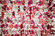 The W.S. Warmenhoven stand has a hanging ceiling of flowers. The Chelsea Flower Show 2014. The Royal Hospital, Chelsea, London, UK