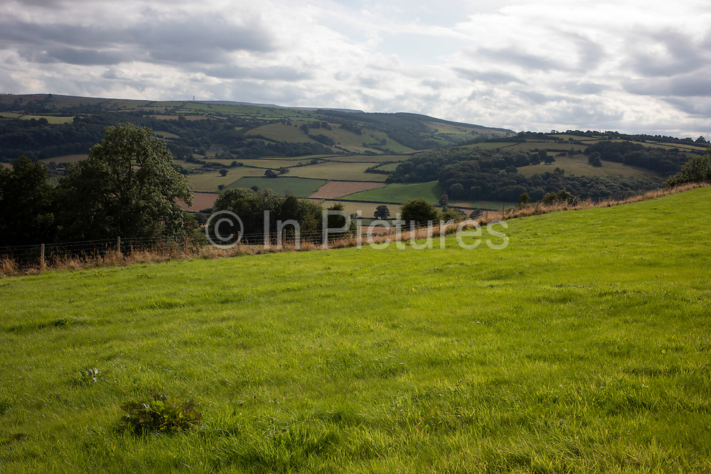 Green grass view over agricultural farmland near Dorstone in the Golden Valley, Herefordshire, United Kingdom. The Golden Valley is the name given to the valley of the River Dore in western Herefordshire, England. The valley is a picturesque area of gently rolling countryside.