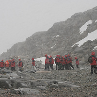 Tourists from a cruise ship explore Booth  Island, Antarctica during a heavy snowstorm.