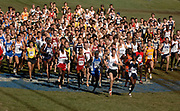The start of the men's 10,000-meter race in the NCAA Cross Country Championships at the Wabash Valley Family Sports Center in Terre Haute, Indiana on Monday, November 20, 2006.