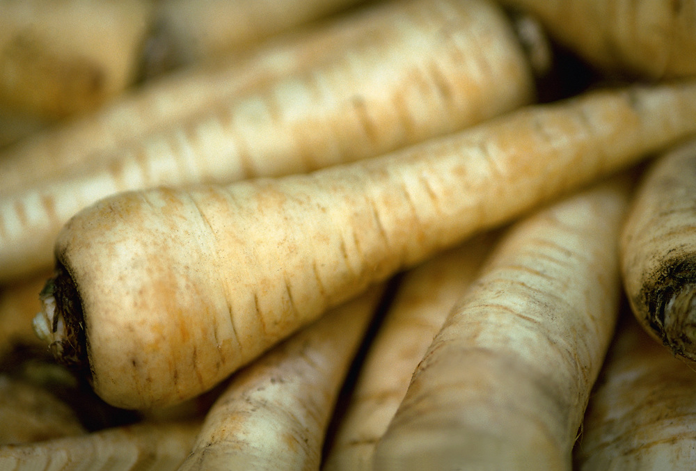 Close up selective focus photograph of some raw Parsnips