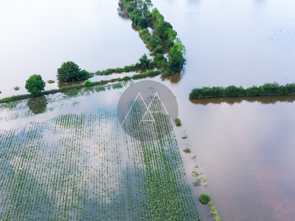 Abstract aerial view of flooded farmland with corn and reflection of the sky during a high water period in summer on floodplains of river Maas, Beugen, Noord-Brabant, The Netherlands.