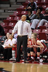 30 January 2015: Michael Brooks  during an NCAA women's basketball game between the Bradley Braves and the Illinois Sate Redbirds at Redbird Arena in Normal IL