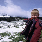 Great Gray Owl, (Strix nebulosa)  7 year old Colter Hyde points to area where he will hike to the owl nest in the Bridger mountains. Montana.