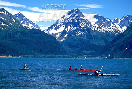 Alaska. Near Seward. Sea kayaking in Resurrection Bay. Chugach moutains, MR.