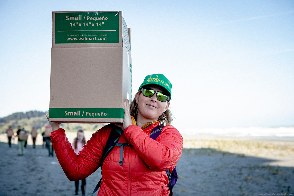 Jenny Hutchinson of U.S. Fish and Wildlife Service and California Native Plant Society member, carries a box of Dudleya farinosa for replanting on the bluffs where they had been removed poachers.