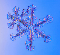 I take thee, snowflake, to be my...