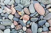Rounded striped and speckled beach stones in shades of pink and grey at Raccoon Beach on Campobello Island.