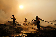 12072017 - La Conchita, California USA: Firefighters put out hotspots after the Thomas Fire moved through La Conchita, an unincorporated community, along the 101 Freeway near the Pacific Ocean. (Photo by Jeremy Hogan) ©2017 All rights reserved