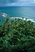 Coast view of Kauai, Hawaii Islands, stormy clouds, sea, palm trees